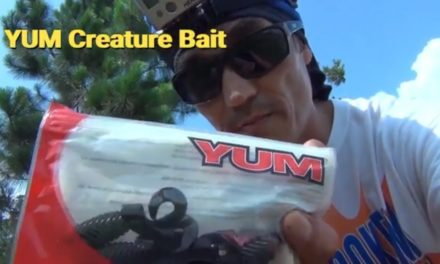 Florida Pond BASS Fishing ,Yum Creature Baits , Chatter bait, Worms, and Frogs. What Should I Use?