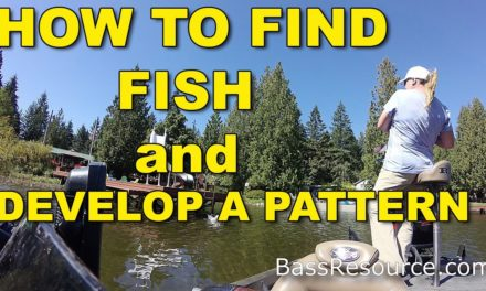 How To Find Fish & Develop A Pattern | Bass Fishing