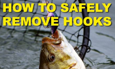 How To Remove Crankbait Hooks Without Hooking Yourself | Bass Fishing