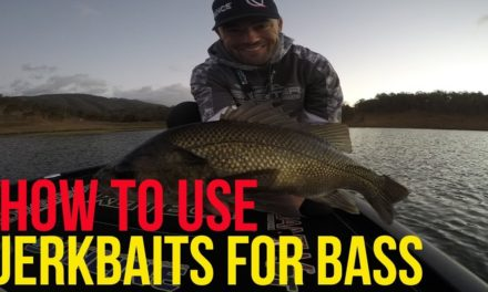 How to fish Jerk baits for Bass, the how, where, and when