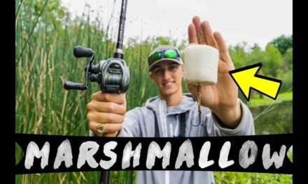 MARSHMALLOW Bass Fishing Challenge!! (Insane Results)