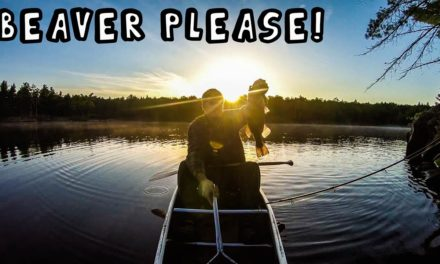 Morning Bass Fishing and Trying to Reason With Beavers