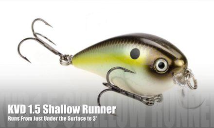 Strike King KVD | Rattling Shallow Runner
