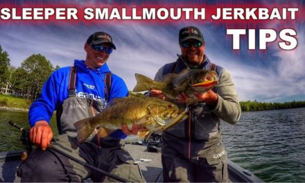 Tips and Tricks to Jerkbait Fishing Success