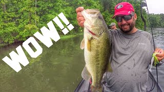FlukeMaster – WOW! There is Great Fishing in Illinois -ft. TackleJunky81 and Phantom Fishing