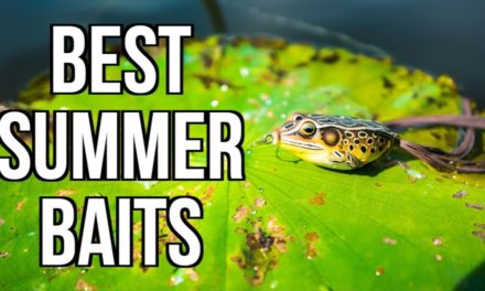 my TOP 5 SUMMER BASS FISHING LURES 2018