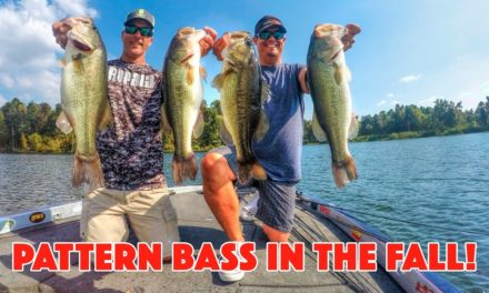 Bass Fishing Patterns for Late Summer and Fall