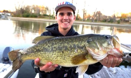 Flair – Finesse Fishing for GIANT Bass