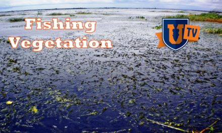 Fishing Vegetation, Winter & Spring with Todd Faircloth