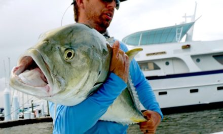 BlacktipH – Fishing for Inshore MONSTERS by the Docks