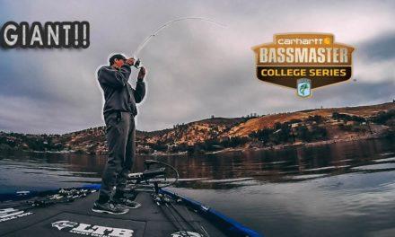 GIANT Summer Bass Fishing Tournament! (Fishing Clear Lake)