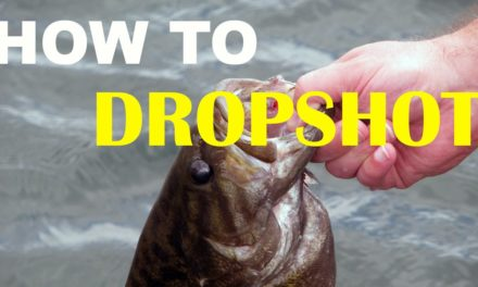 How To Dropshot Fish | Bass Fishing