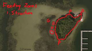 Salt Strong | – How To Find Inshore Feeding Zones Using Online Maps (Real-Life Example)