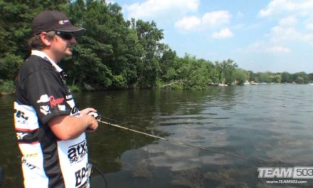 How To Fish Spinnerbaits for Bass