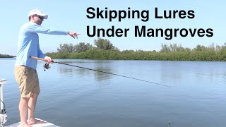 Salt Strong | – How to Skip a Lure under Mangroves – Casting Tips