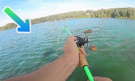 I Caught a ZOMBIE BASS While Fishing (Ft. Flukemaster)