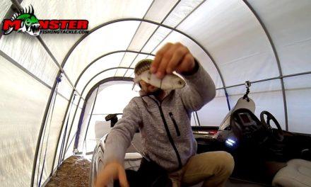 Mikey Balzz – Fishing the Bull Shad Swimbait
