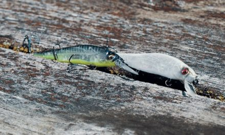 My FAVORITE baits for Bass Fishing!