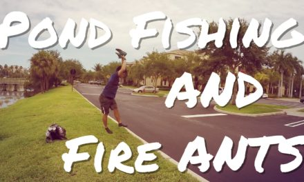 Lunkers TV – Pond Fishing and Fire Ants Ft. 1Rod1ReelFishing and BlacktipH