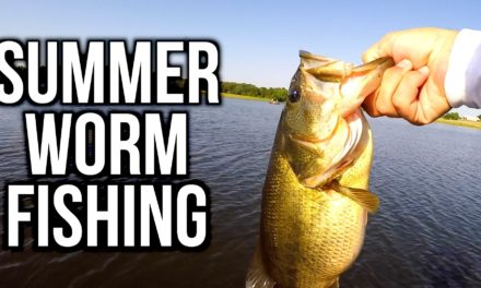 Flair – Summer Bass Fishing with Plastic Worms – VLOG