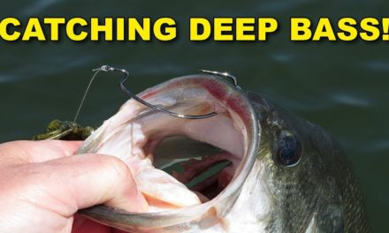 The Key To Catching Bass In Deep Water (This Works!) | Bass Fishing