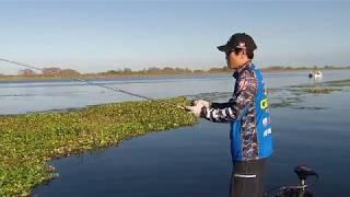 MajorLeagueFishing – Inside Access: Tak's Favorite Bait for Florida Fishing