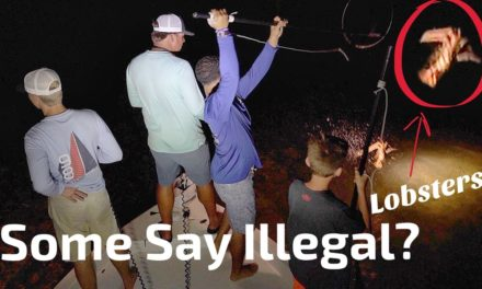 Scott Martin Pro Tips – Some say Illegal, but it's NOT!