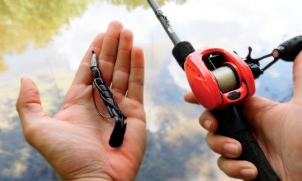 BEST Bass Fishing Bait & How To Fish It (3 Different Ways)
