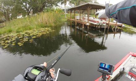 Bass Fishing Downtown Orlando! (FL3)