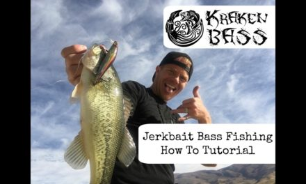 Bass Fishing Jerkbaits – When, where, how & what to use to catch fish.