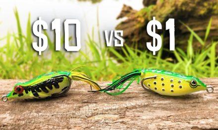 CHEAP vs EXPENSIVE Frog Fishing CHALLENGE!!! (HUGE BASS)