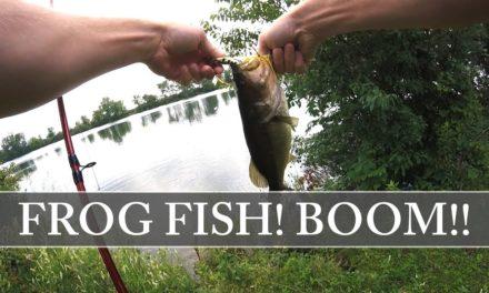 Fishing a NEW pond – Strike King KVD Sexy Frog