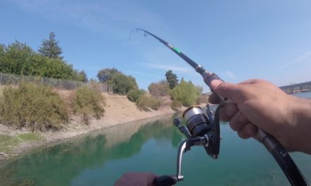 How To Catch your First Fish (Largemouth Bass)