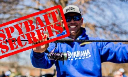 I HAVE to EAT That! Bass Spybait & Spinbait Fishing Secrets