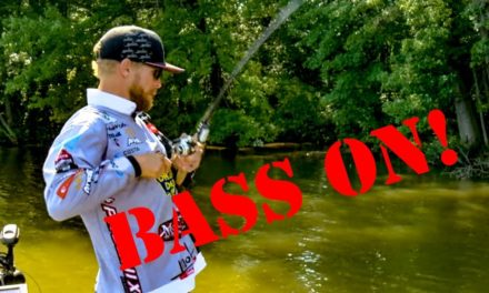 MONSTER Bass Lurk in Shallow Water Cover – Want to Catch Them?!?