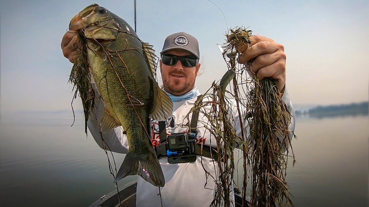 Topwater Fishing For Big Bass Angler Hq