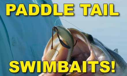 Paddle Tail Swimbaits | Bass Fishing