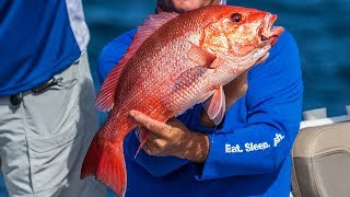 Red Snapper and King Mackerel Fishing in Destin Florida