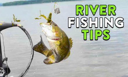 Summer River Fishing Tips   Mississippi River Bass Fishing