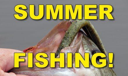 Summer Senko Fishing | Bass Fishing