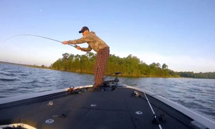 Bass fishing bloopers in the south.. funny