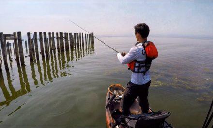 Clear Lake Summer Bass Fishing