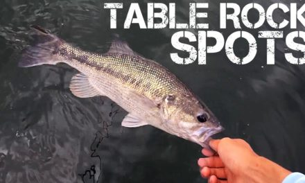 Drop Shot Fishing for Spotted Bass–Table Rock Lake