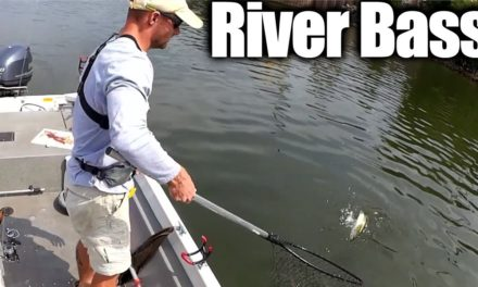 Fishing for Bass and Catfish at the Same Time – River Fishing!