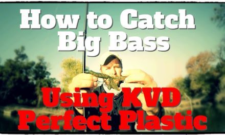 Lunkers TV – How to Catch Big Bass Using KVD Perfect Plastics – Bass Fishing Tips and Techniques