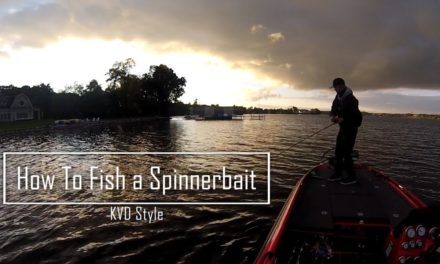 How to Fish a Spinnerbait KVD Style