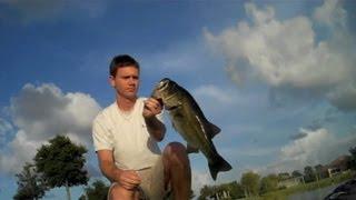 Huge Red Eye Shad Bass (Hat Cam Bass)