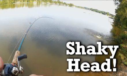 Learning from Ike !!! – Shaky Head Basics