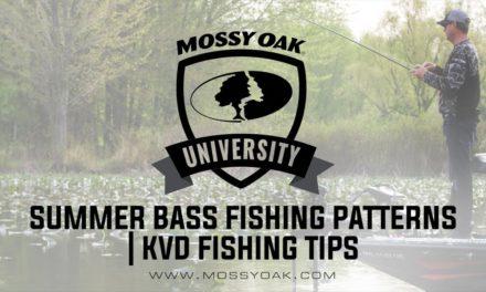 Summer Bass Fishing Patterns | KVD Fishing Tips