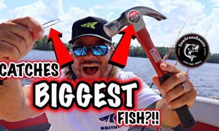 TOP FALL FISHING HACKS!! Amazing Bass Fishing Tricks you NEED to KNOW!!